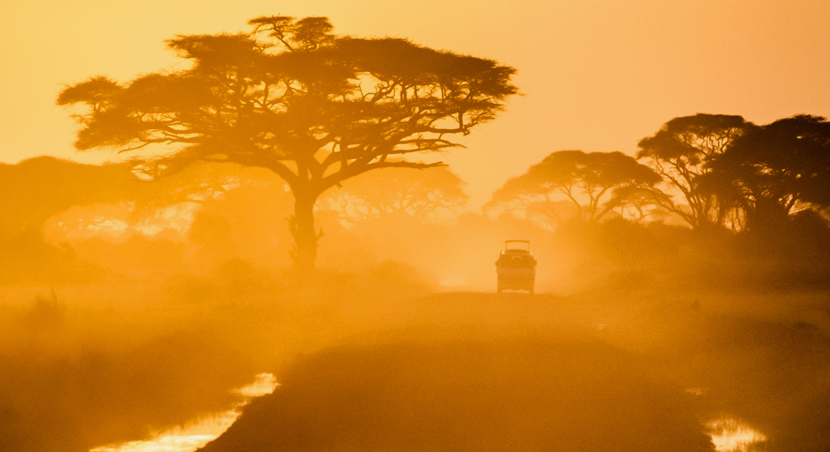 Jeep driving into the sunset in the savanna