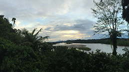 Scenic view of Napo River in Ecuador