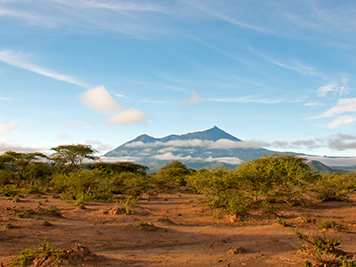 Scenic view of a savanna with Mount Kilimanjaro in the backdrop