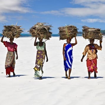 Women carrying bundles of sticks on their heads