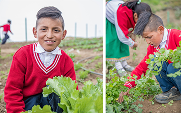 Student helping in school garden in Ecuador