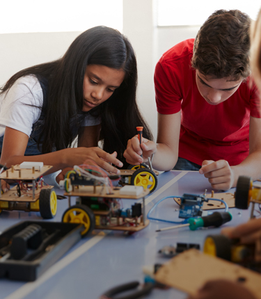Build and use your STEM skills to address these issues