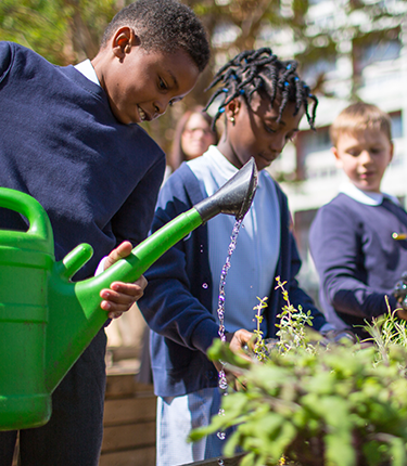 A group of students watering plants