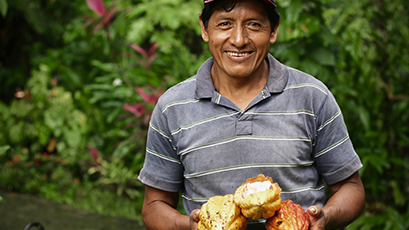 Local Ecuadorian cacao farmer holding cacao fruit outside