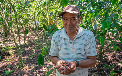 A cocoa farmer in Ecuador