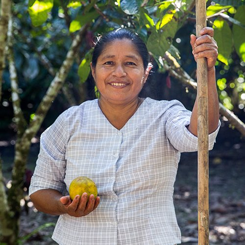 Local woman holding cacao fruit in Ecuador