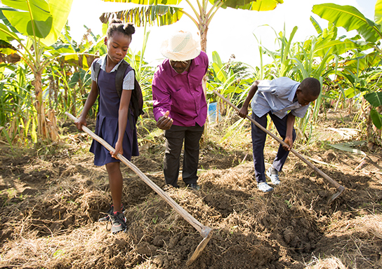 Haitian students help out in a school garden.