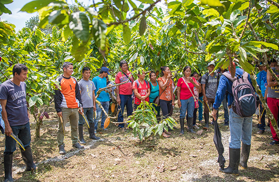 Cacao farmers at training at WE Charity's Agriculture Learning Center in Ecuador