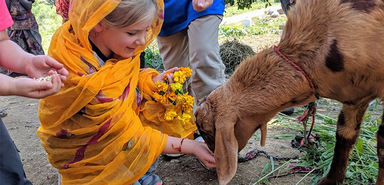 One of Michelle's daughters holding flowers and feeding a goat from her hand.